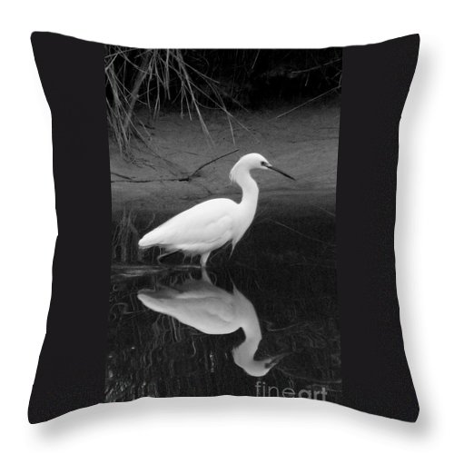 Bird Throw Pillow featuring the photograph Looking For Breakfast. by Mark Grayden