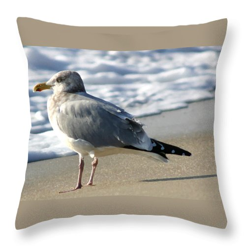 Seascape Throw Pillow featuring the photograph Looking Forward by Mary Haber