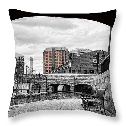 Monochrome Throw Pillow featuring the photograph Looking Out From Under by Tim Wilson