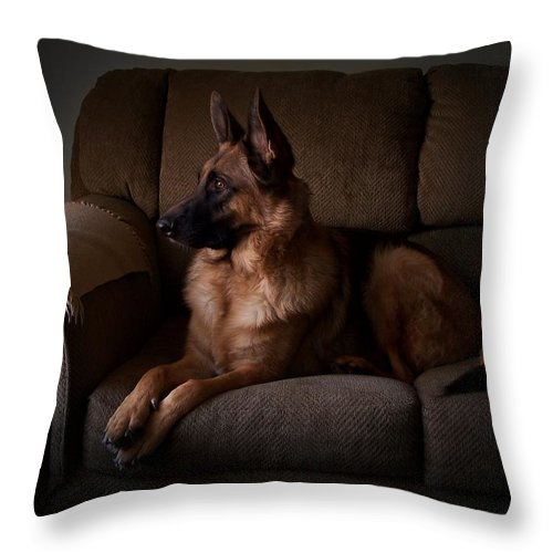 German Shepherd Dogs Throw Pillow featuring the photograph Looking Out The Window - German Shepherd Dog by Angie Tirado