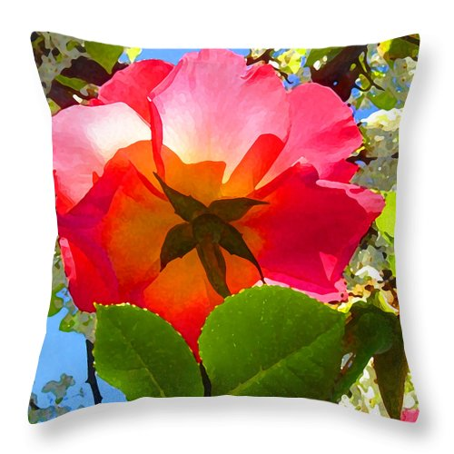 Roses Throw Pillow featuring the photograph Looking Up At Rose And Tree by Amy Vangsgard