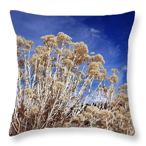 Landscape Throw Pillow featuring the photograph Looking Up by Mary Haber