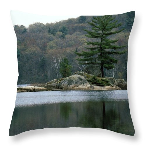 Loon Throw Pillow featuring the photograph Loon At Black Lake by David Edward Burton