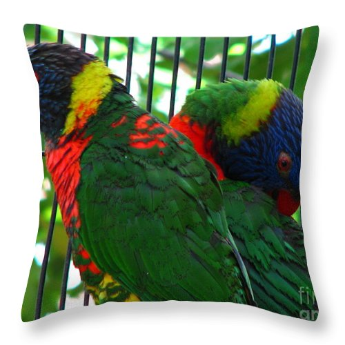 Patzer Throw Pillow featuring the photograph Lory by Greg Patzer