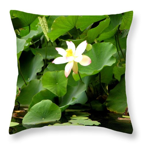 Lotus Throw Pillow featuring the photograph Lost City Lotus by Michael Durst