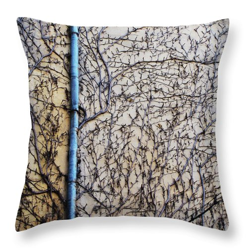 Blue Throw Pillow featuring the photograph Lost by Eena Bo