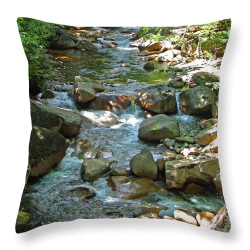 Forest Throw Pillow featuring the photograph Lost River 1 by Mark Sellers