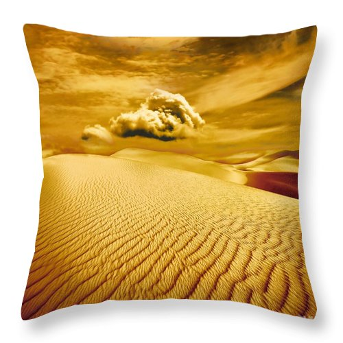 Desert Throw Pillow featuring the photograph Lost Worlds by Jacky Gerritsen