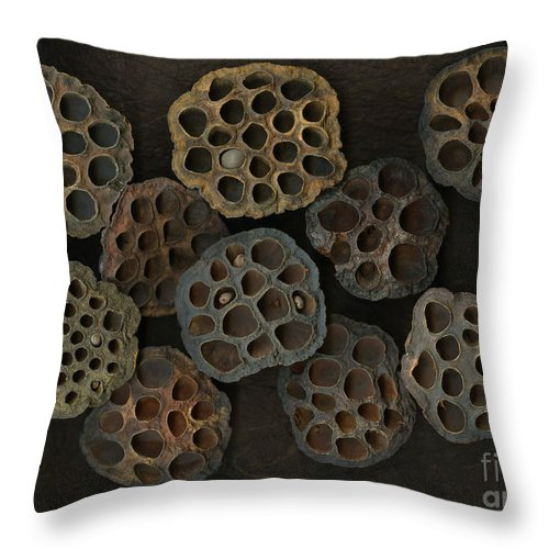 Lotus Throw Pillow featuring the photograph Lotus Pods by Christian Slanec