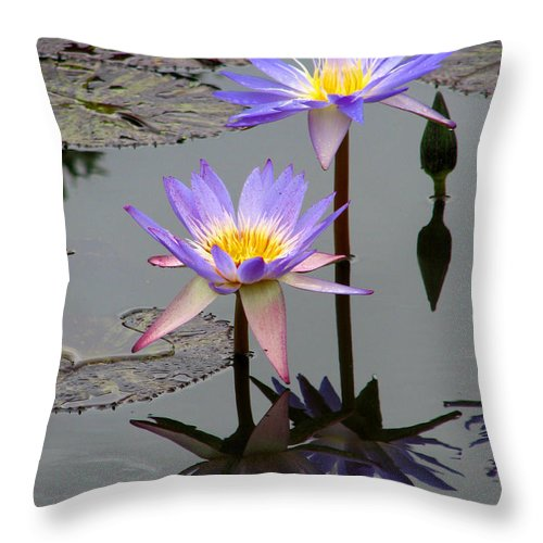 Lily Throw Pillow featuring the photograph Lotus Reflection 4 by David Dunham