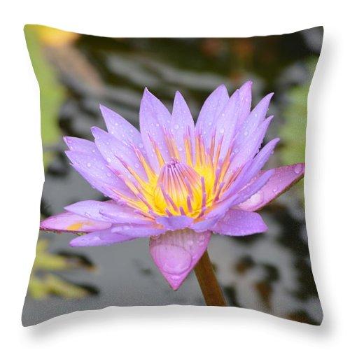 Morning Shine Throw Pillow featuring the photograph Lotus by Sainuddeen Alanthi