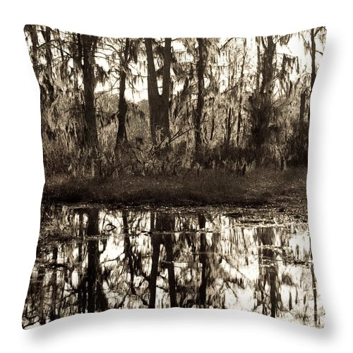 Trees; Landscape Throw Pillow featuring the photograph Louisiana Swamps 3 by Sally Mellish