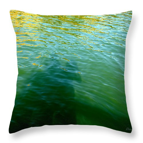 Water Throw Pillow featuring the photograph Love In The Afternoon by Donna Blackhall