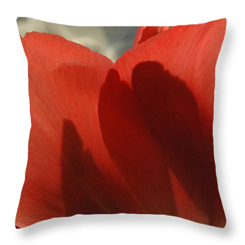 Tulips Throw Pillow featuring the photograph Love Of A Tulip by Trish Hale