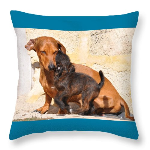 Dog Throw Pillow featuring the painting Love by Richard Benson