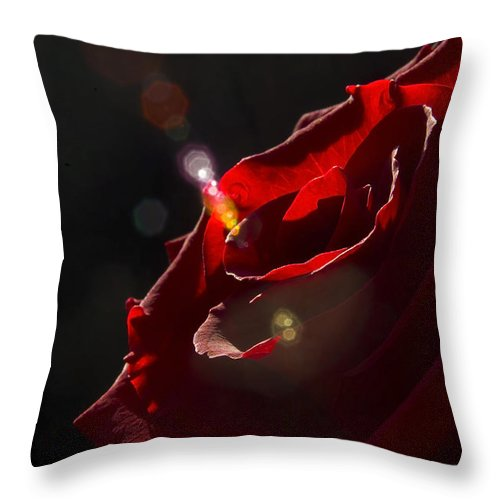 Black Throw Pillow featuring the photograph Love Rose by Svetlana Sewell
