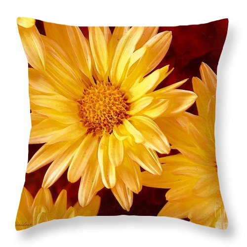 Flowers Throw Pillow featuring the photograph Lovely Mums by Patricia L Davidson