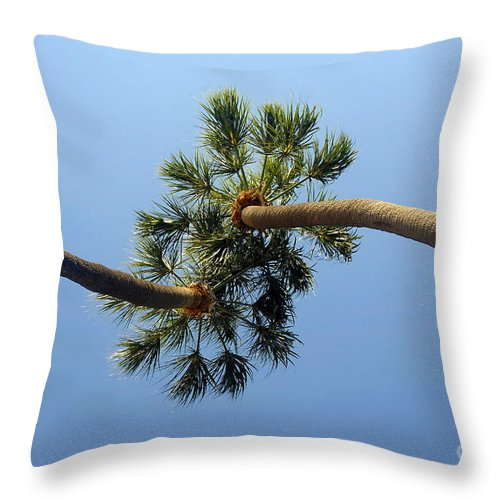 Love Throw Pillow featuring the photograph Lovers by David Lee Thompson
