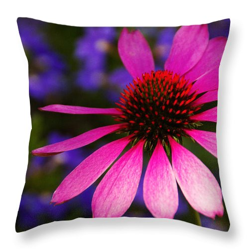 Flower Throw Pillow featuring the photograph Loves Me Loves Me Not by Linda Shafer