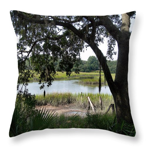 Scenic Tours Throw Pillow featuring the photograph Low Country by Skip Willits