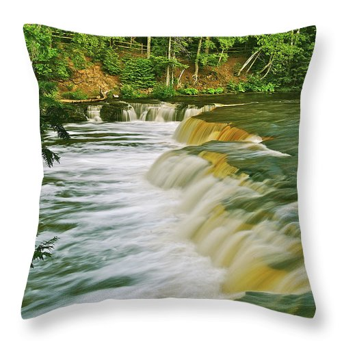 Tahquamenon Throw Pillow featuring the photograph Lower Tahquamenon 6200 by Michael Peychich