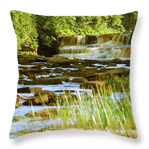 Tahquamenon Throw Pillow featuring the photograph Lower Tahquamenon Falls 6128 by Michael Peychich