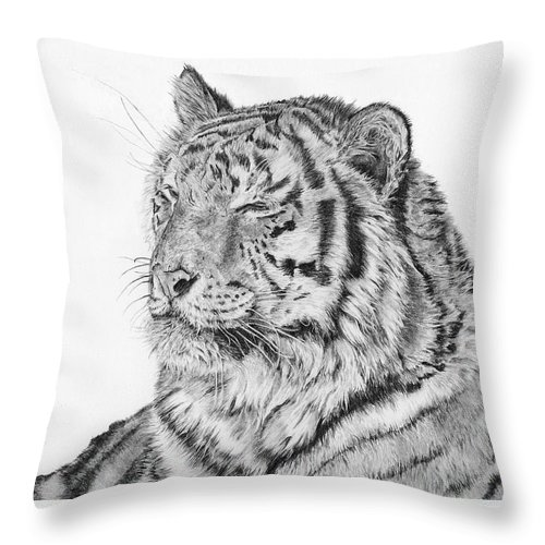 Siberian Tiger Throw Pillow featuring the drawing Luna by Shevin Childers