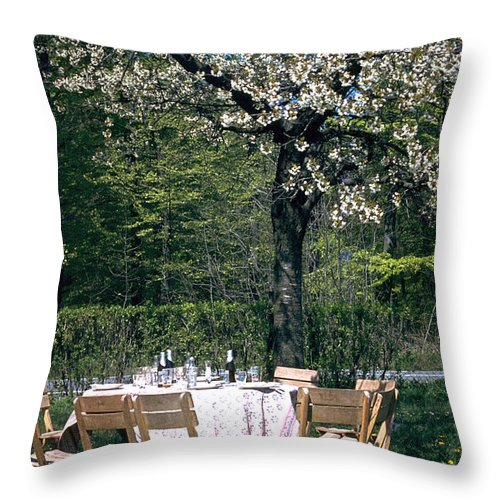 Lunch Throw Pillow featuring the photograph Lunch by Flavia Westerwelle