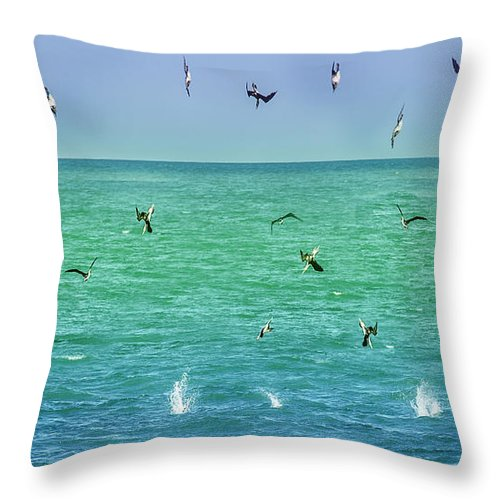 Ocean Throw Pillow featuring the photograph Lunch Is Served by Leena Hannonen