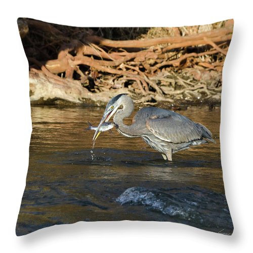 Heron Throw Pillow featuring the photograph Lunch On The Neuse River by George Randy Bass