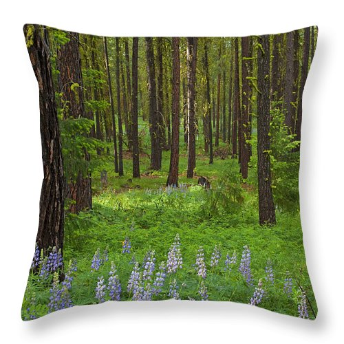 Forest Throw Pillow featuring the photograph Lupine Carpet by Mike Dawson