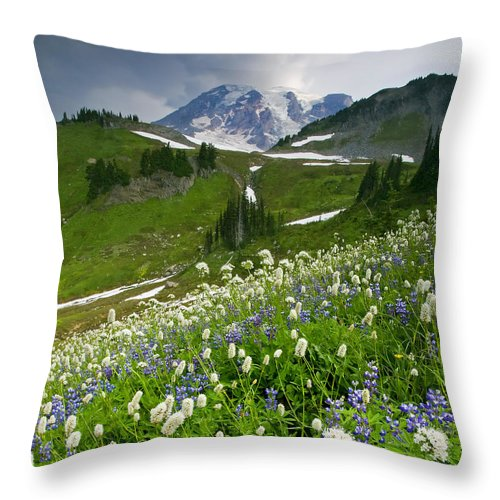 Rainier Throw Pillow featuring the photograph Lupine Storm by Mike Dawson