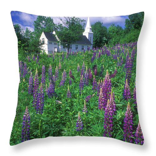 Sugar Hill Throw Pillow featuring the photograph Lupines And Church Sugar Hill by John Burk