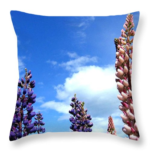 Lupins Throw Pillow featuring the photograph Lupins by Will Borden