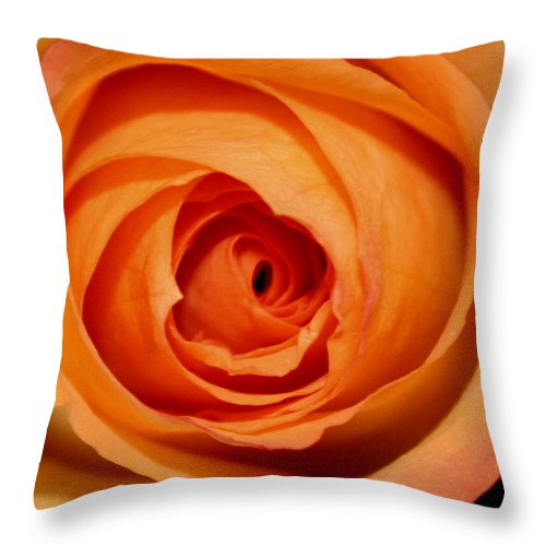 Rose Throw Pillow featuring the photograph Luscious Rose by Mary Gaines