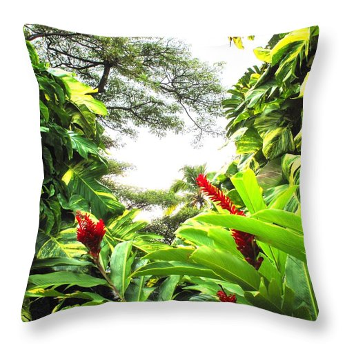 St Kitts Throw Pillow featuring the photograph Lush by Ian MacDonald