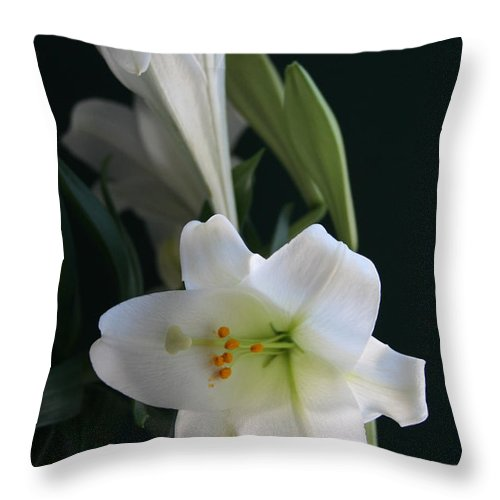 Lily Throw Pillow featuring the photograph Lustrous Lilies by Mary Gaines