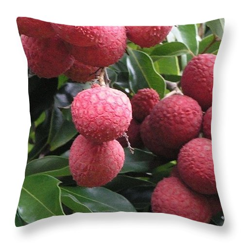Red Throw Pillow featuring the photograph Lychee by Mary Deal