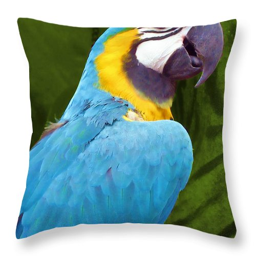 Bird Throw Pillow featuring the photograph Macaw by JAMART Photography