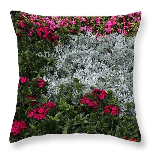 Garden Throw Pillow featuring the photograph Mackinac Bridge Overlook Garden 2 by Mary Bedy