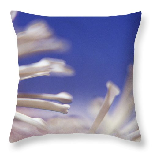 Macro Throw Pillow featuring the photograph Macro Flower 2 by Lee Santa