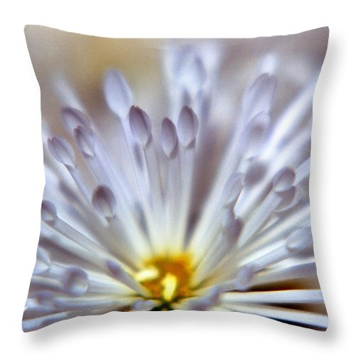 Macro Throw Pillow featuring the photograph Macro Flower 3 by Lee Santa