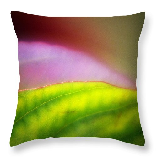 Macro Throw Pillow featuring the photograph Macro Leaf by Lee Santa