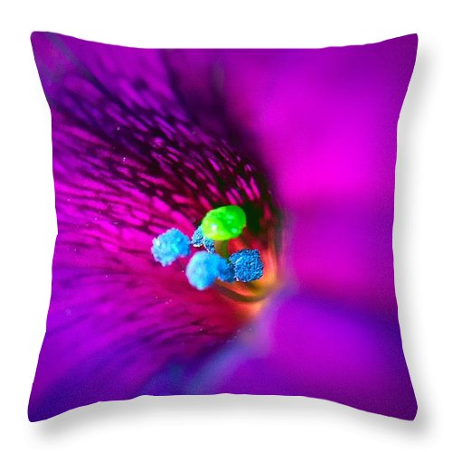 Ume Throw Pillow featuring the photograph Macro Purple Flower by Bri Lou