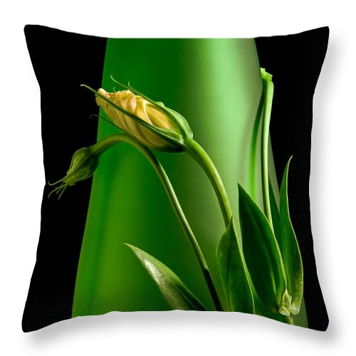 Flower Throw Pillow featuring the photograph Made For Each Other by Tom Mc Nemar