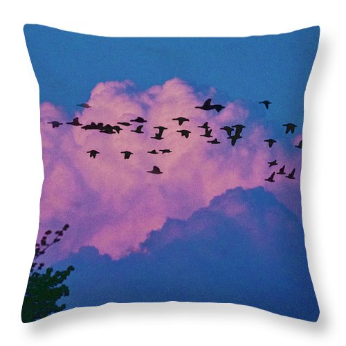 Cloud Throw Pillow featuring the photograph Magenta Dream by Yuri Lev