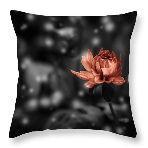Flower Throw Pillow featuring the photograph Magic 5 by Billy Bateman