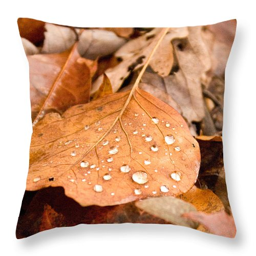 Surface Throw Pillow featuring the photograph Magic Of Surface Tension by Douglas Barnett