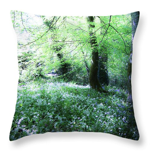 Irish Throw Pillow featuring the photograph Magical Forest At Blarney Castle Ireland by Teresa Mucha