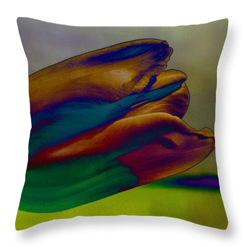 Flower Throw Pillow featuring the photograph Magical Tulip by Arlene Carmel